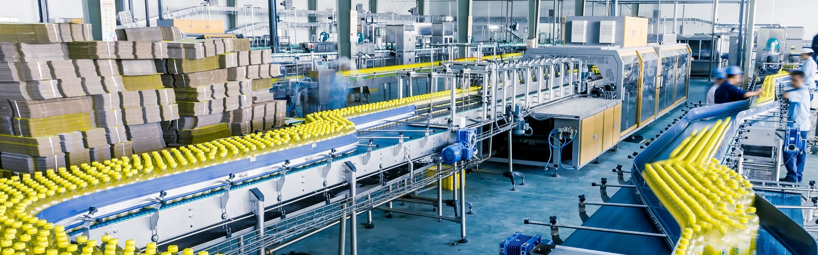 food processing insurance