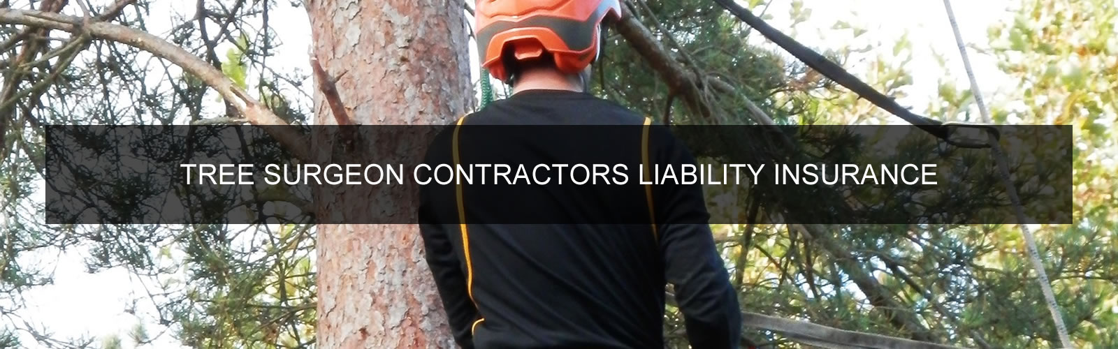Tree Surgeon Contractors Liability Insurance